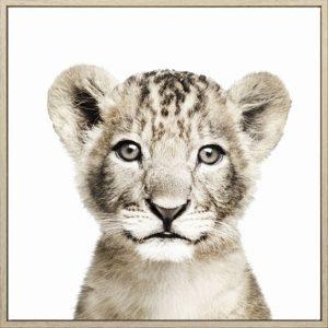 E533155 300x300 - Lion Cub Print