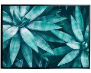 E533131 177x142 - Aqua Agave Print