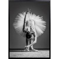 Bella II - Bella Ballerina II - Black & White Canvas