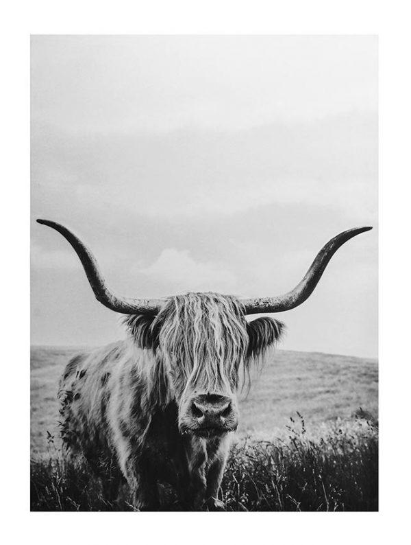 E533026 600x794 - The YAK - Black & White Canvas