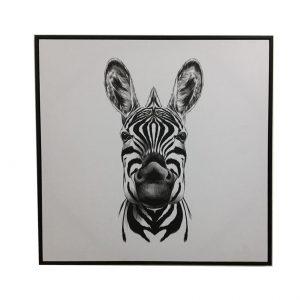 E533112 1 300x300 - Ziggy Zebra Print - Black & White