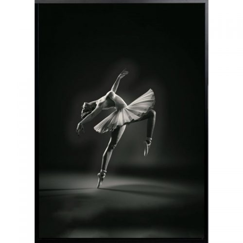 bella 500x500 - Bella Ballerina - Black & White Canvas