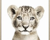 E533155 177x142 - Lion Cub Print