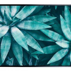 E533131 300x300 - Aqua Agave Print