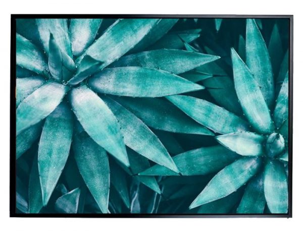 E533131 600x458 - Aqua Agave Print